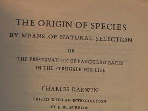 Origin of Species title