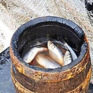 Herring Barrel
