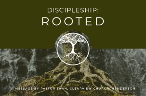 Discipleship Rooted